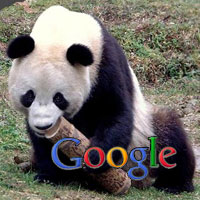 Google Panda Unleashed